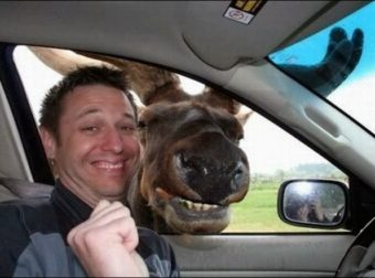Funny Selfies That Went To Another Level